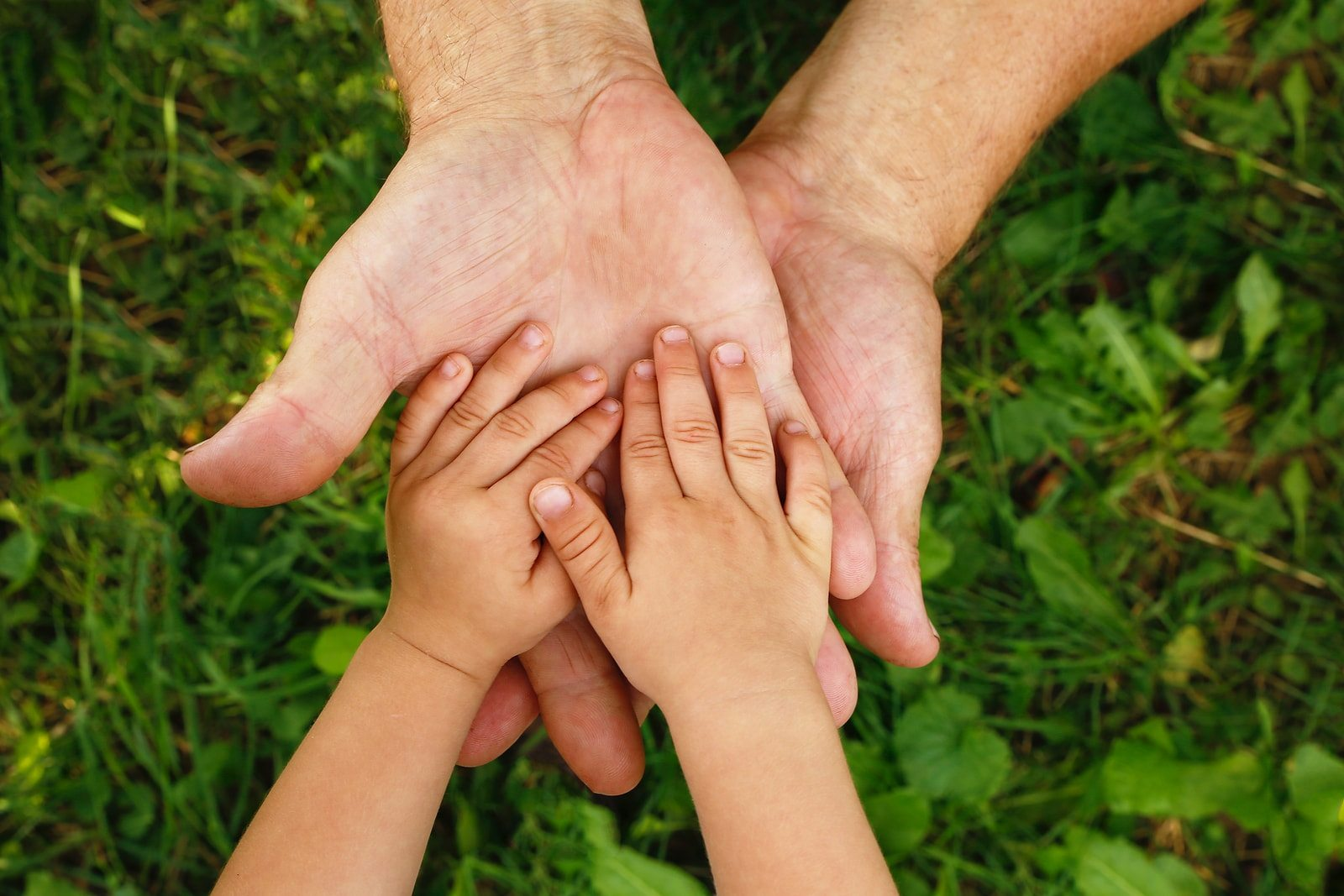 Four Tips To Help You Win A Custody Case